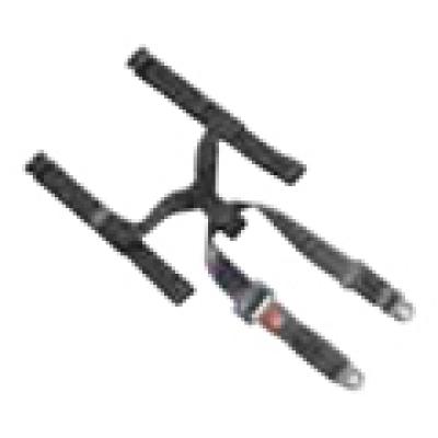 Seat Belt System Including Hip Belt**